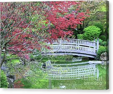 Japanese Garden Bridge In Springtime Canvas Print by Carol Groenen