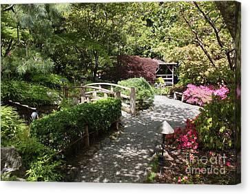 Japanese Garden Path With Azaleas Canvas Print