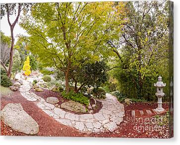 Japanese Garden Serenity At Zilker Botanical Gardens - Austin Texas Hill Country Canvas Print