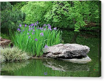 Japanese Gardens - Spring 02 Canvas Print by Pamela Critchlow