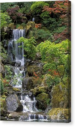 Japanese Garden Waterfall Canvas Print