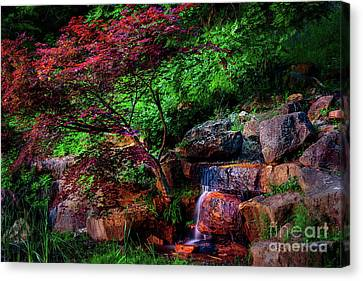 Canvas Print - Japanese Maple At Honor Heights Park by Tamyra Ayles