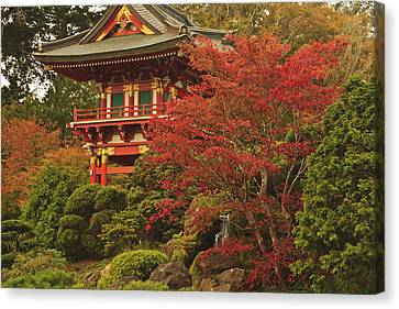 Japanese Tea Garden In Golden Gate Park Canvas Print by Stuart Westmorland