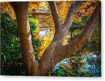 Tea Tree Canvas Print - Japanese Tea House by Inge Johnsson