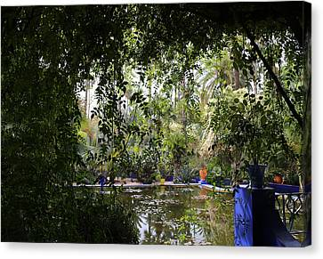 Canvas Print featuring the photograph Jardin Majorelle 2 by Andrew Fare