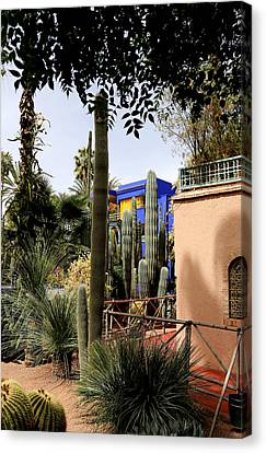 Canvas Print featuring the photograph Jardin Majorelle 4 by Andrew Fare