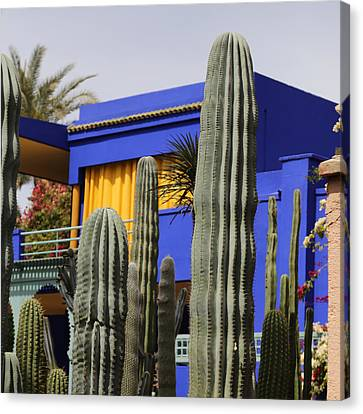 Canvas Print featuring the photograph Jardin Majorelle 5 by Andrew Fare