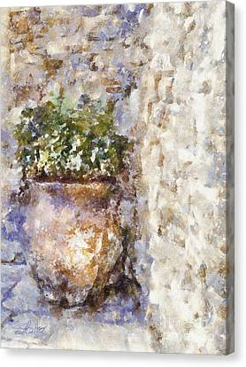 Jardiniere Canvas Print by Shirley Stalter