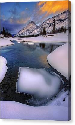 Jasper In The Winter Canvas Print by Dan Jurak