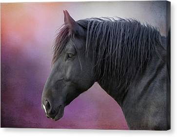 Jay Canvas Print by Debby Herold