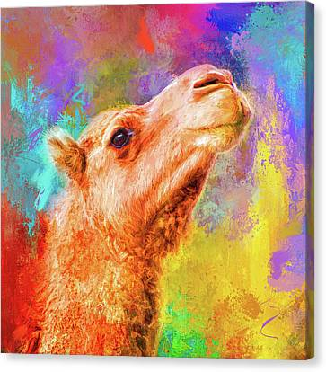 Jazzy Camel Colorful Animal Art By Jai Johnson Canvas Print