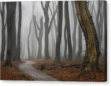 Jeepers Creepers Canvas Print by Martin Podt