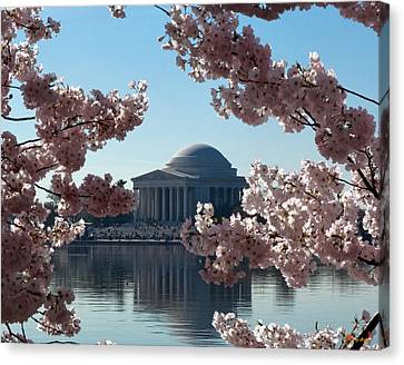 Canvas Print featuring the photograph Jefferson Memorial At Cherry Blossom Time On The Tidal Basin Ds008 by Gerry Gantt