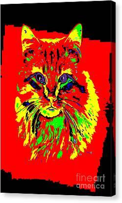 Jekyll The Cat Canvas Print