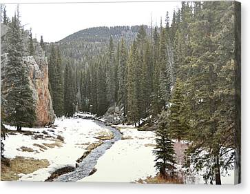 Canvas Print featuring the photograph Jemez Mountains Forest Stream by Andrea Hazel Ihlefeld