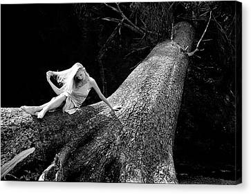 Jen On Big Log Canvas Print by Joe Klune