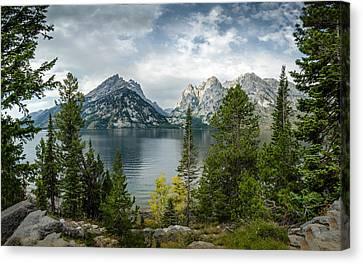 Jenny Lake Overlook Canvas Print
