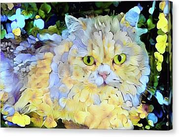 House Pet Canvas Print - Jennyanydots by Susan Maxwell Schmidt