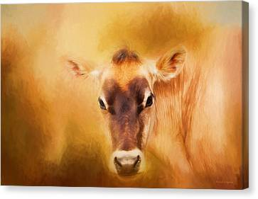 Cow Canvas Print - Jersey Cow Farm Art by Michelle Wrighton