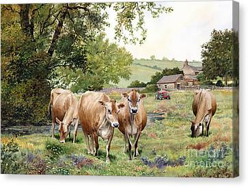 Jersey Cows Canvas Print by Anthony Forster