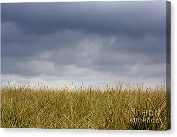 Canvas Print featuring the photograph Remember When The Days Were Long by Dana DiPasquale