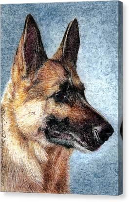 Jersey The German Shepherd Canvas Print by Melissa J Szymanski