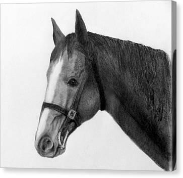 Jess Canvas Print by Susan Tilley