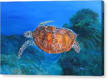 Jessie's Sea Turtle Canvas Print