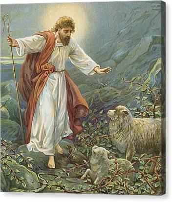Jesus Christ The Tender Shepherd Canvas Print by Ambrose Dudley