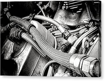 Braids Canvas Print - Jet Fuel Line by Olivier Le Queinec