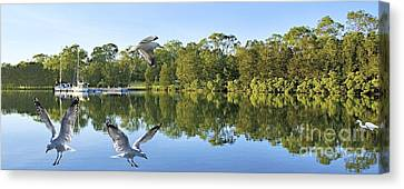 Jetty With Water Reflections Seagulls. Original Landscape Photo. Canvas Print by Geoff Childs