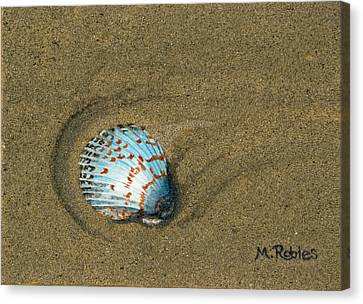 Jewel On The Beach Canvas Print by Mike Robles