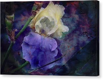 Jeweled Iris Canvas Print by Toni Hopper