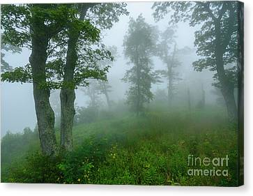Canvas Print featuring the photograph Jewell Hollow Overlook by Thomas R Fletcher