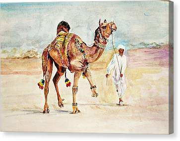 Jewellery And Trappings On Camel. Canvas Print by Khalid Saeed