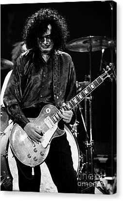 Robert Plant Performance Art Canvas Print - Jimmy Page-0048 by Timothy Bischoff