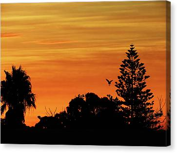 Canvas Print featuring the photograph Jingle Sunset by Mark Blauhoefer