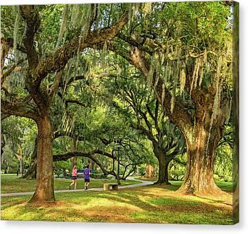 Jogging In City Park - New Orleans Canvas Print by Steve Harrington