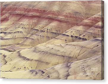 John Day Fossil Beds Canvas Print by Greg Vaughn - Printscapes
