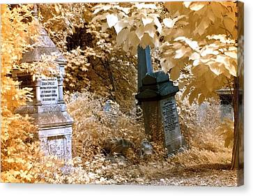 Autumnal Walk At Abney Park Cemetery Canvas Print