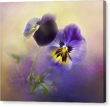 Canvas Print featuring the photograph Johnny Jump Up by Theresa Tahara