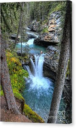 Johnston Canyon Falls Hike Lower Falls II Canvas Print