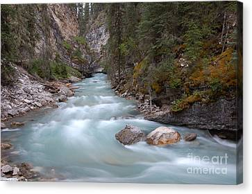 Canvas Print featuring the photograph Johnston Canyon In Banff National Park by RicardMN Photography