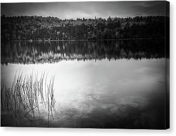 Rocky Maine Coast Canvas Print - Jordan Pond Bw by Terry Davis