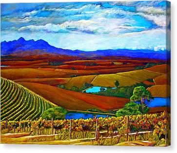Jordan Vineyard Canvas Print by Michael Durst
