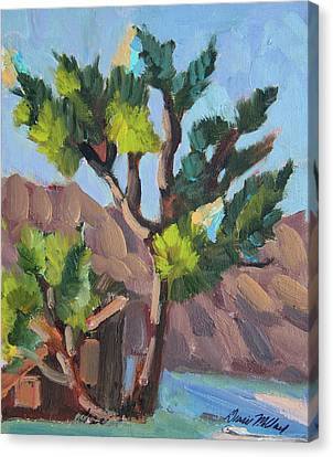 Canvas Print featuring the painting Joshua At Keys Ranch by Diane McClary