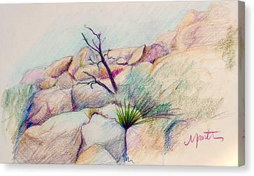 Joshua Tree  Canvas Print by Athena  Mantle