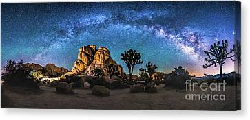Joshua Tree Milkyway Canvas Print