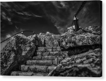 Journey To The Top Canvas Print