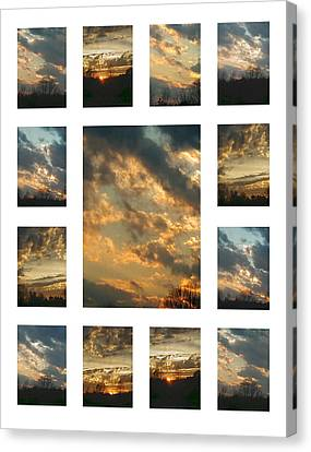 Joy In The Skies  Canvas Print by Robin Coaker